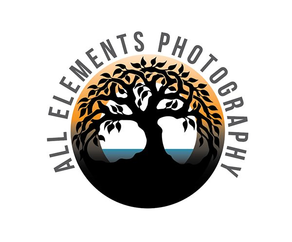 All Elements Photography